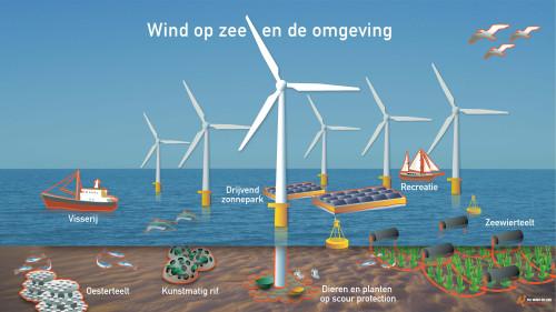 Wind op de noordzee: toekomstvisie